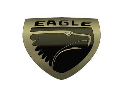 Eagle Repair